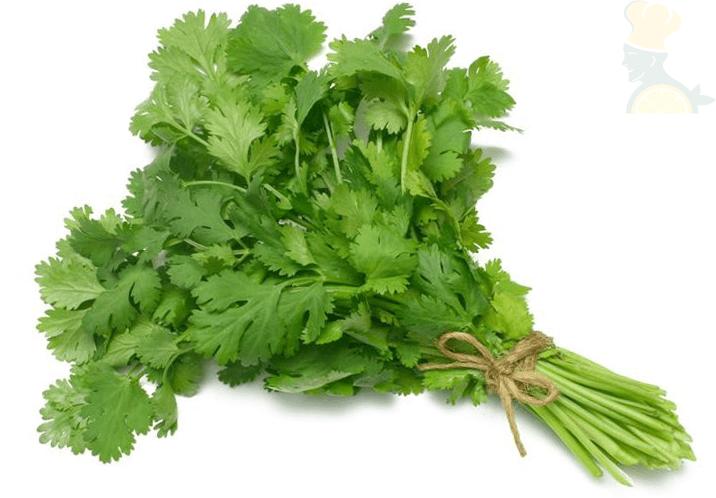 سبزی گشنیز یکی از سبزی های قورمه سبزی
