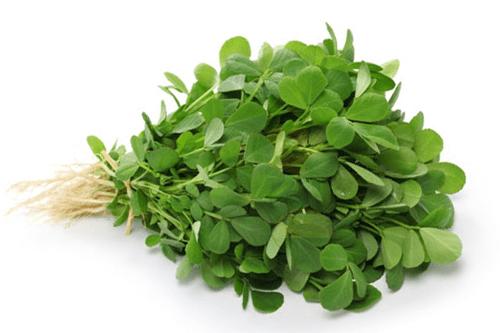 گیاه شنبلبله یکی از سبزی های قورمه سبزی