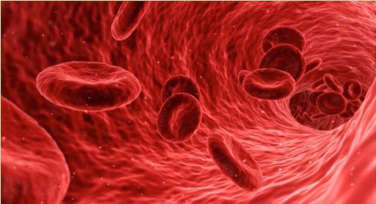 خواص سبزی جعفری برای کم خونی