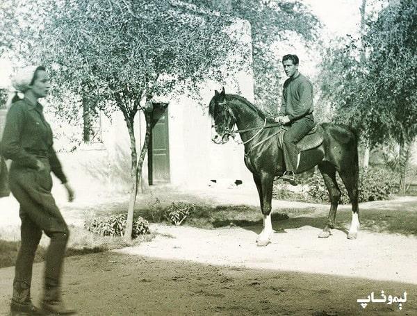 تصویری از مهری لیلی همسرش