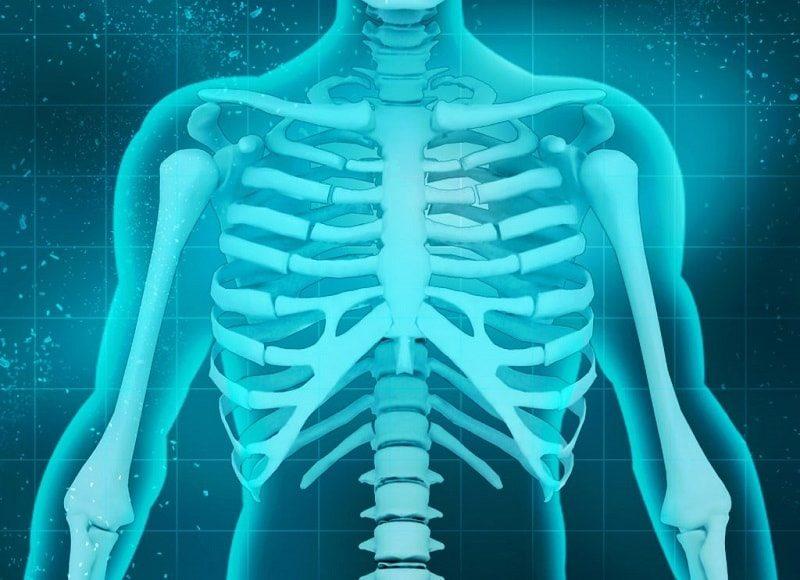 خواص-گشنیز-افزایش-سلامت-استخوان-ها