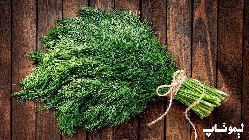 سبزی-کوکو-سبزی-چیست؟