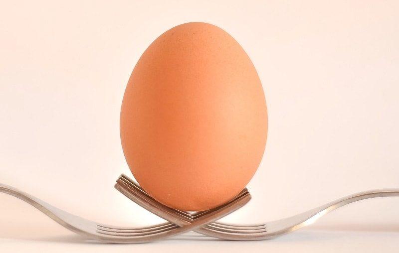 پودر-سفیده-تخم-مرغ