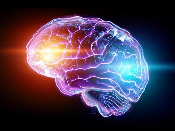 تقویت-مغز-و-حافظه