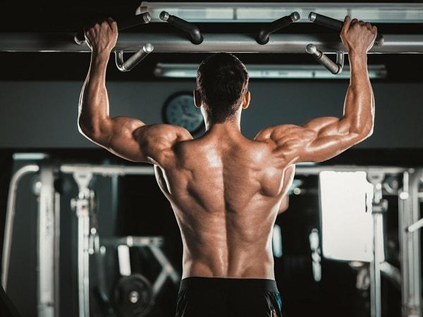 تمرینات عضلات پشت
