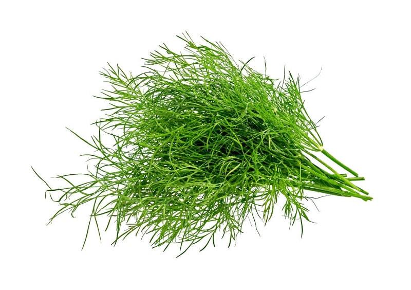 سبزی مخصوص آش رشته چه سبزی