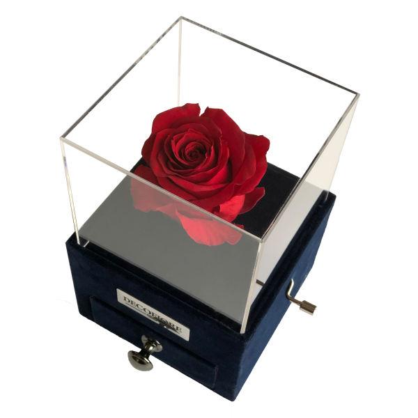 جعبه موزیکال کشودار رز جاودان دکوفیوره ملودی عاشقانه – به همراه کارت عاشقانه و پاکت مخصوص دکوفیوره