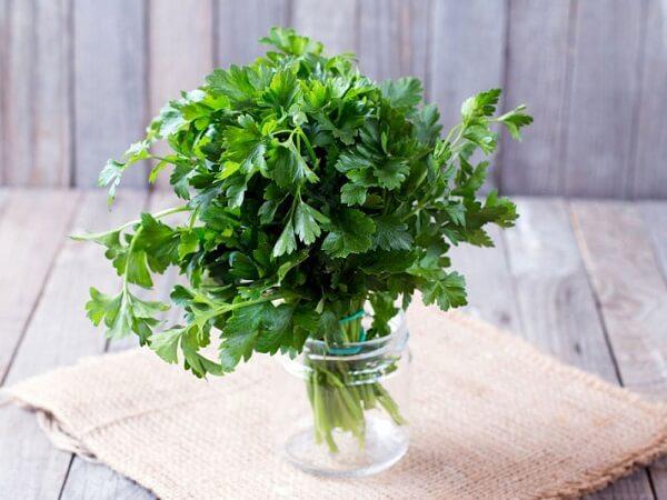 خواص-سبزی-گشنیز
