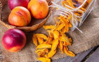 بهترین دستگاه میوه خشک کن خانگی