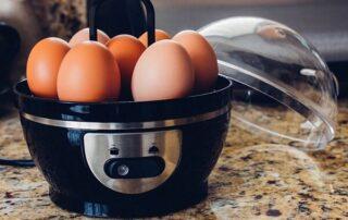 بهترین مارک تخم مرغ پز